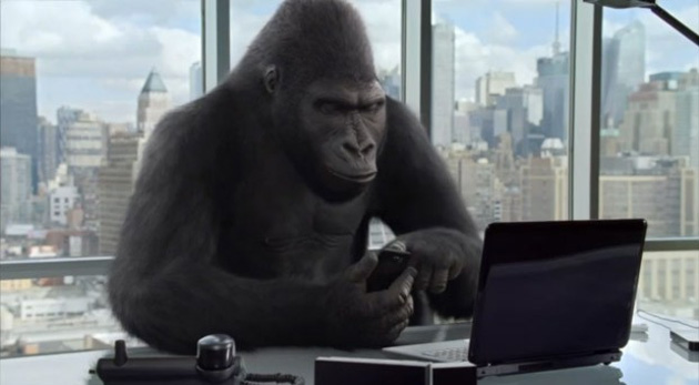 Nije važno što telefoniramo jedni drugima, važno je da slušalicu drži gorila.
