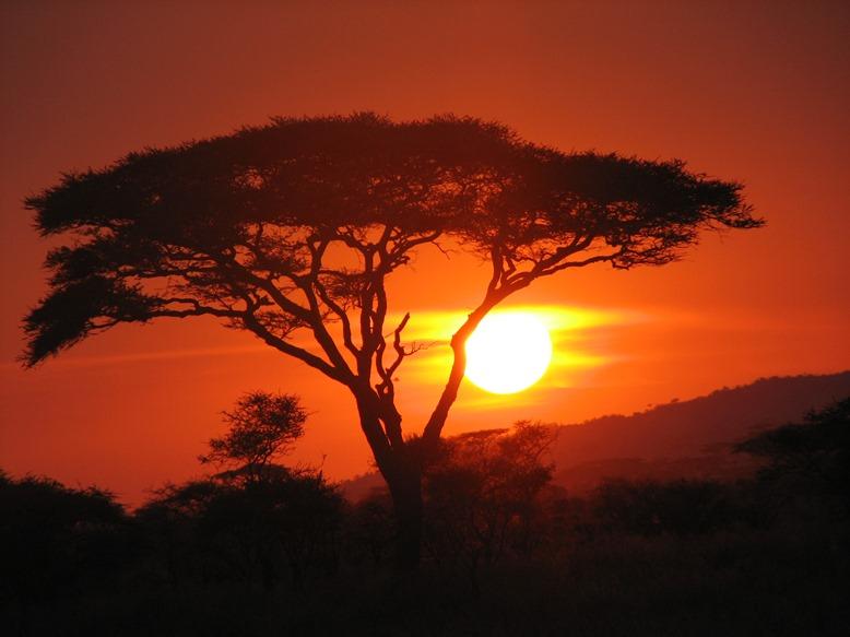 stranica za upoznavanje Afrika najbolje plaćene web stranice za upoznavanja